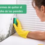 Como quitar el moho de la paredes