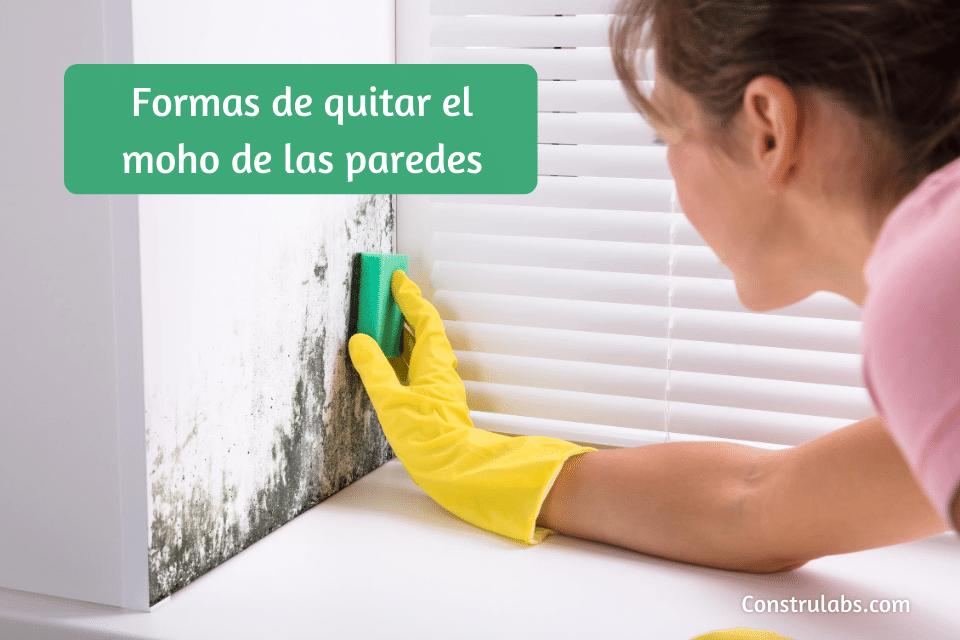 Como quitar el moho de las paredes
